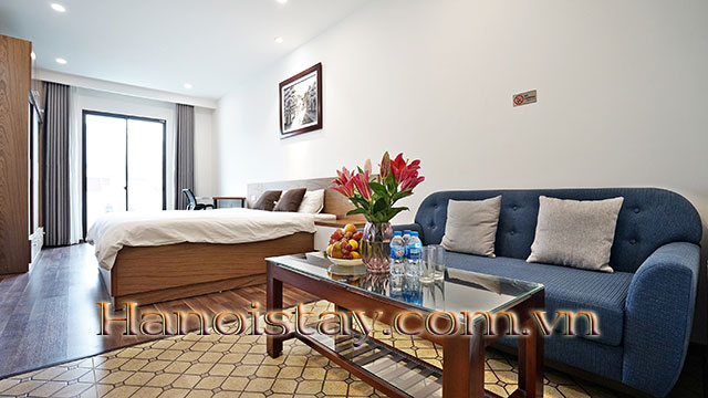 Bright Modern Studio Apartment For Rent In Cat Linh Open View